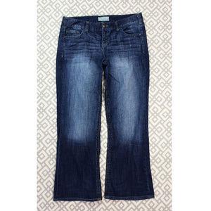 Maurices Dark Blue Ashlyn Boot Bootcut Jeans 13 14